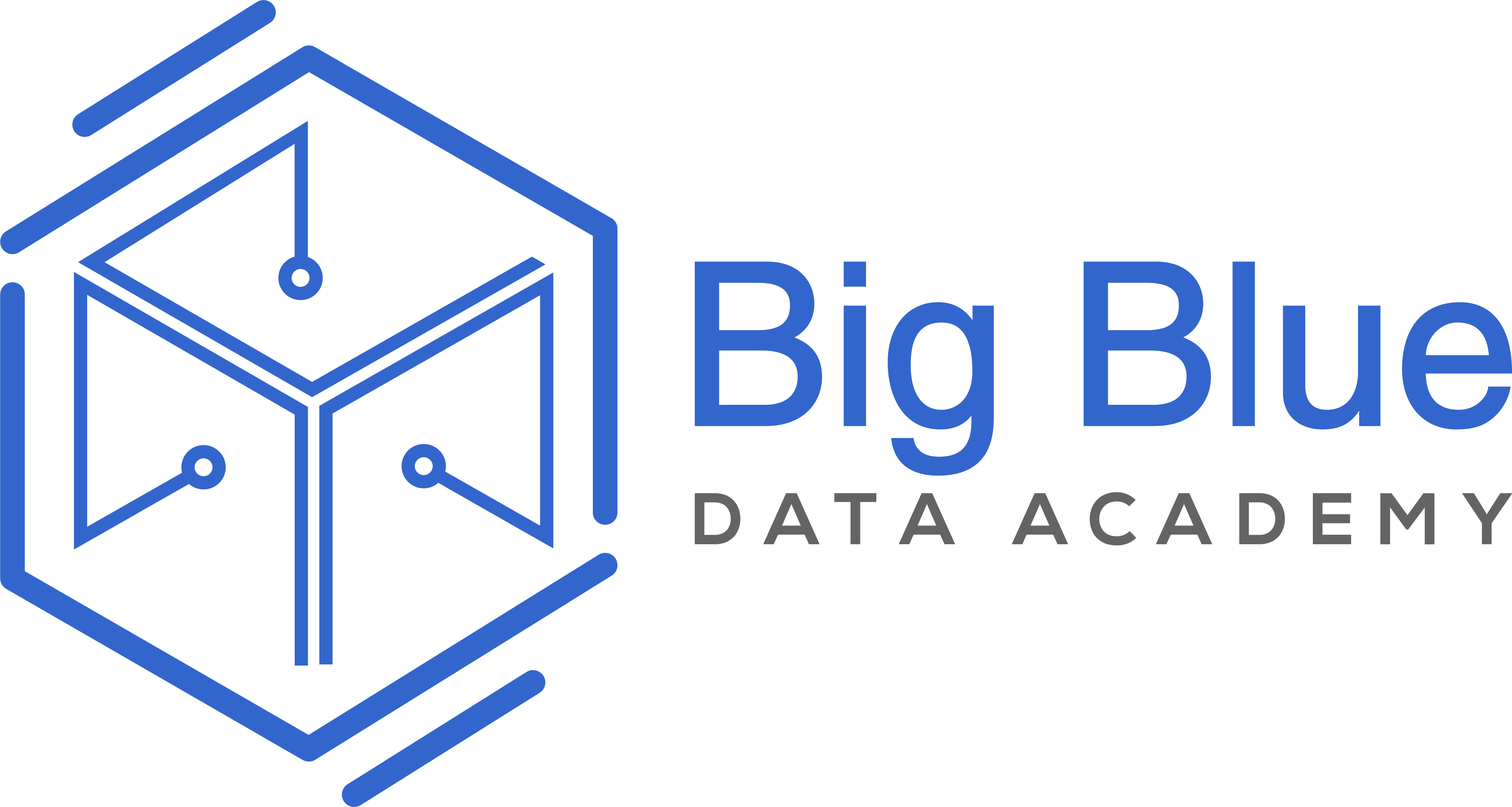 Big Blue - The Data Academy